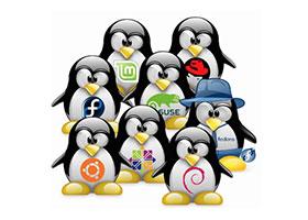 توزیع های مطرح و پرکاربرد لینوکس