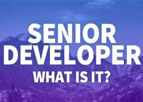 برنامه نویس ارشد چیست و چگونه میتوانم یکی از آنها شوم؟